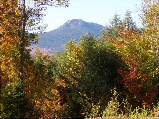 view of mt chocorua